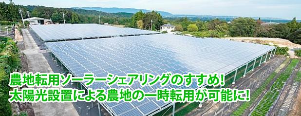 農地転用ソーラーシェアリングのすすめ!太陽光設置による農地の一時転用が可能!